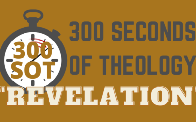 300SOT#2: What Is Revelation?